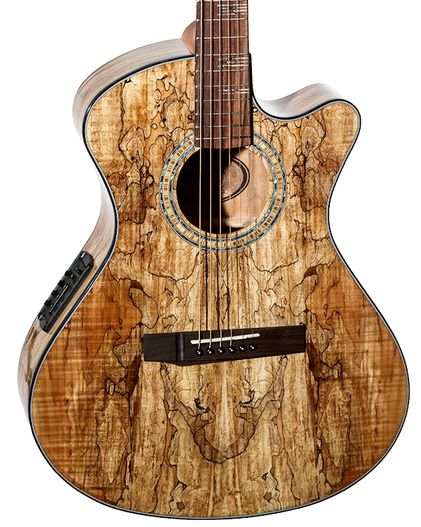 Guitar Spotlight: EOS 2S2