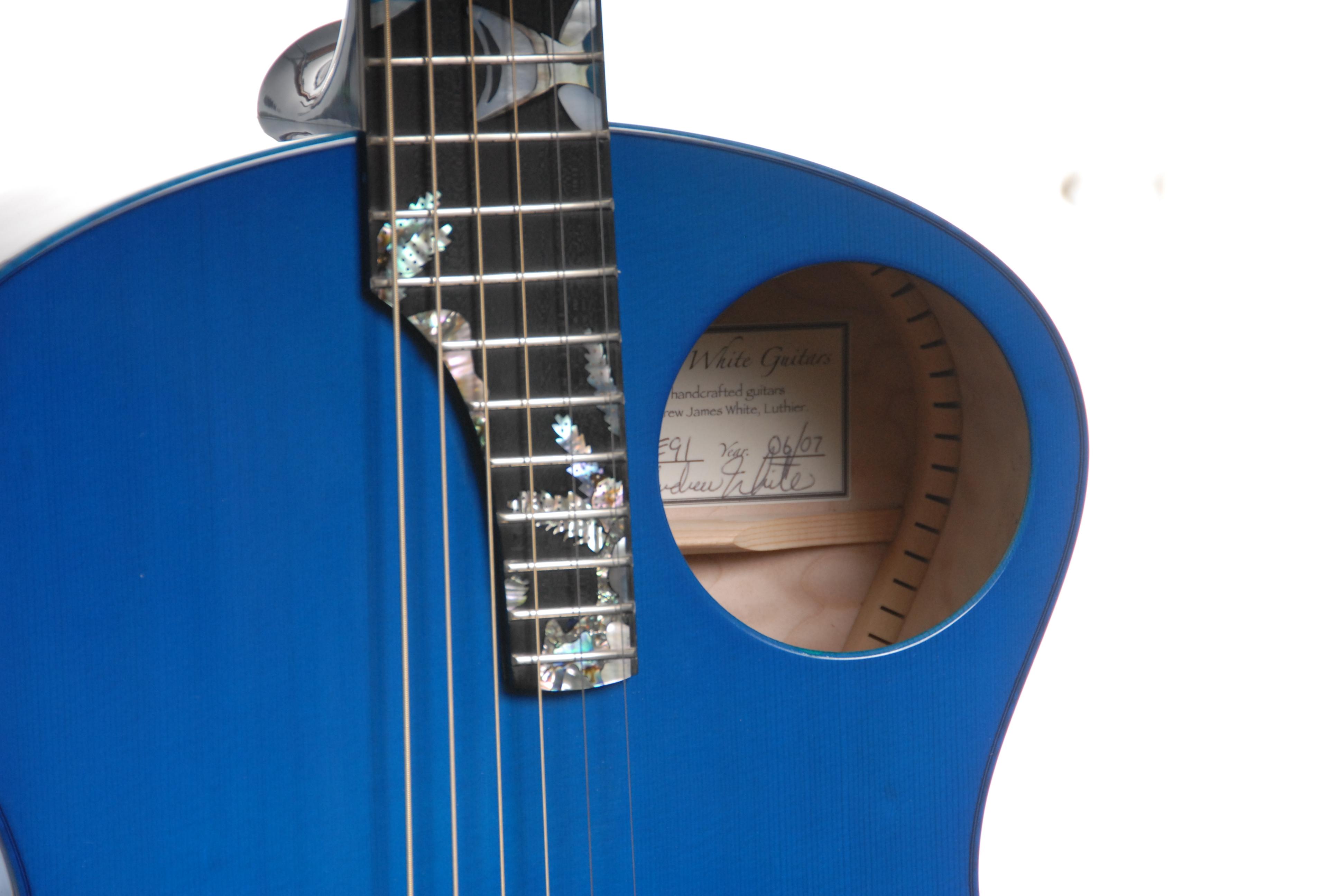 Blue Tang Guitar!