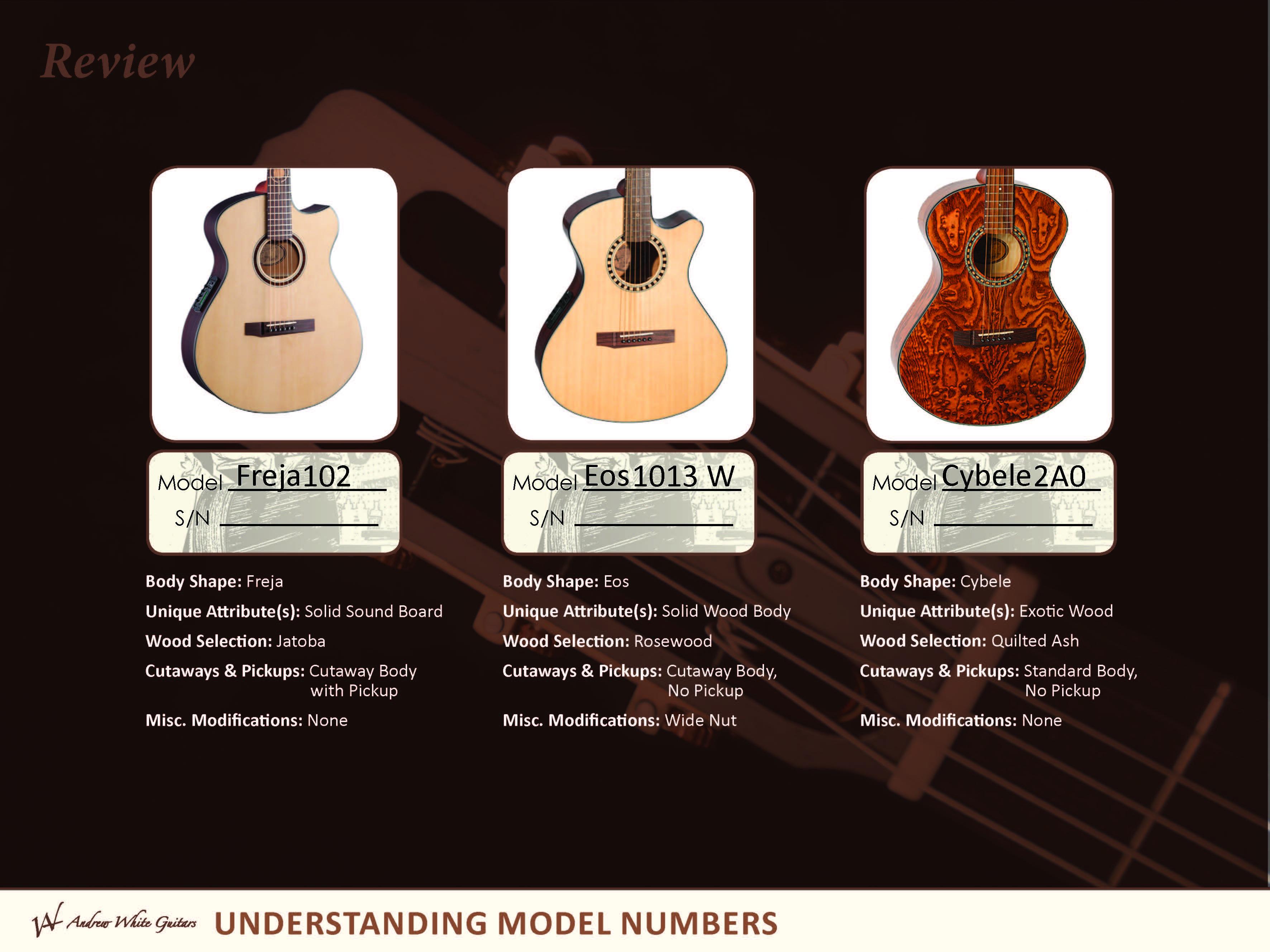 Andrew White Guitars